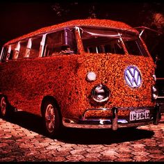 My VW Camper Van: VW CHILLI BUS