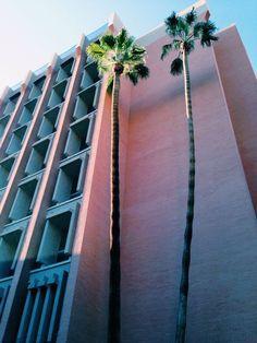 Palm Springs, California | Wanderlust