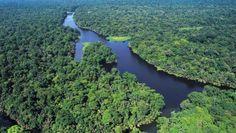 Name:  Parque-Nacional-de-las-Tortugas-en-Costa-Rica-1.jpg Views: 65 Size:  60.2 KB