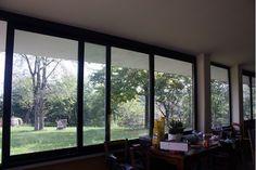 Villa in vendita a Cerasolo, immersa nel verde, eco sostenibile, dispone di 13.000 metri di terreno in dolce declivio con 100 ulivi e più di 30 alberi da frutto, laghetto in fase di realizzazione. La villa di c.a. 250 mq dispone di ampia veranda a vista sulle colline. Un sogno per gli amanti della natura
