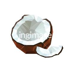 Illustration of geometric polygonal coconut fruit isolated on white background