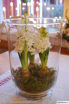 Röda radhuset: Julmys – Hemma hos Nettskie - Home Page Swedish Christmas, Simple Christmas, Winter Christmas, Christmas Home, Vase Deco, Glass Planter, Inside Plants, Garden Bulbs, Deco Floral