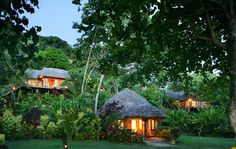 Matangi Island Resort, Fiji - Went here for our 20th Anniversary. Stayed in the treehouse peeking out above the bungalow you see in the photo! Amazing and would recommend to anyone! A boutique resort and hidden wonder of the world. South Seas Adventures and Sarah took care of everything :)