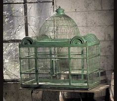 antique bird cage--my kind of decoration Antique Bird Cages, The Caged Bird Sings, Ivy House, Vintage Birds, Vintage Green, Vintage Decor, Bird Feathers, Beautiful Birds, Bird Houses