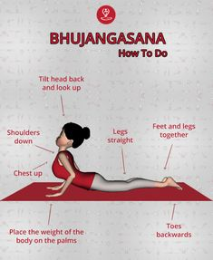 or the Cobra pose is among the most versatile yoga postures It is amazing backbend which strengthens, flexes, opening up the chakras too. Learn Yoga, How To Do Yoga, Health Education, Physical Education, Yoga Asanas Names, Ramdev Yoga, Yoga Progress, Workout Routines, Yoga Workouts