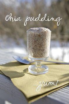Low Carb Recipes - Chia Pudding #keto #lchf #lowcarb
