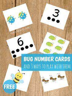 Tarjetas de números y bichitos