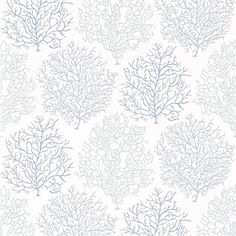Sanderson Coral Reef Marine/Blue Wallpaper DVOY213390