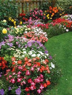can someone send the gardening fairy to my house so I can make this happen?