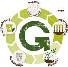 Eco friendly packaging is made from plant based raw materials and biodegrades back into plant based raw materials after use. This is a cradle to cradle cycle compared to the cradle to grave cycle of most conventional packaging which is made from petroleum and ends up in a landfill.