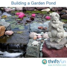This is a guide about building a garden pond. Building a garden pond helps create a tranquil setting and has the added bonus of attracting wildlife such as birds and frogs.