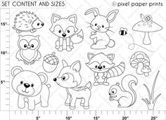 woodland animal coloring/pages | Woodland Animals Clip Art Black And White 1000+ images about squirrel ...