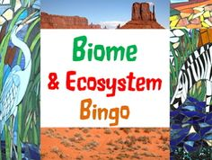 Game: Biome & Ecosystem bingo. Take a tour of all the terrestrial biomes, aquatic ecosystems and review related vocabulary with this 2 in 1 bingo game. Full version includes 75 color coded clue cards and 43 total bingo cards (31 of biomes and 12 related vocabulary). No two bingo cards are alike.