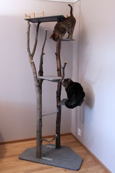 Neule työn alla: Kissan kiipeilypuu Cat Tree, Habitats, Fancy, Pets, Diy, Home Decor, Decoration Home, Bricolage, Room Decor