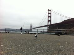 Goldengate, San Francisco