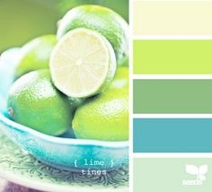 lime, butter, mint, and teal color combo