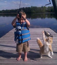Fun Claw - Funny Cats, Funny Dogs, Funny Animals: Funny Animal Pictures With Captions - 35 Pics Animals And Pets, Funny Animals, Cute Animals, Kids And Pets, Funniest Animals, Funny Horses, Wild Animals, Baby Animals, I Love Cats