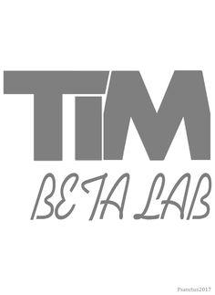 TIM * BETA * LAB * 2017