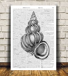 Nice modern Dictionary print. Lovely Seashell poster. Beautiful Nautical print for your home and office. Cute Beach art. SIZES: A4 (8.3 x 11) and