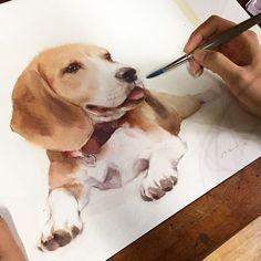 MOMO #watercolor #art #artist #paint #painting #dog #lover Phatcharaphan