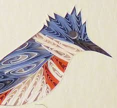 Quilled kingfisher