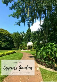 Cypress Gardens is a historic botanical gardens located inside LEGOLAND Florida. Escape the lines for a few minutes and walk through this magical dreamland that has been there since 1939.