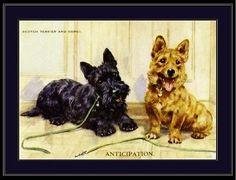 English-Picture-Scottish-Terrier-Corgi-Dog-Art