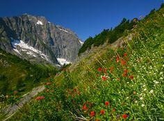 Andy Porter photo - North Cascades National Park