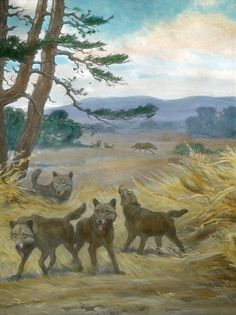 Dire wolves by Charles R. Knight(1922)