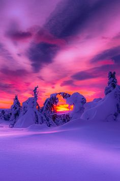Winter colours can be wonderful in Lapland Finland