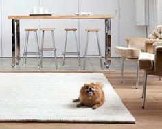 Ein weißer Teppich bringt sofort einen Hauch von Klasse in Ihren Raum. Helligkeit, Reinheit und Eleganz. Diese alle beschreiben unser Ayush Teppich, der jetzt ab 130EUR gekauft werden kann.  Bestellen Sie den Ayush Teppich hier: http://www.sukhi.de/rechteckig-ayush-wollschlingteppiche.html
