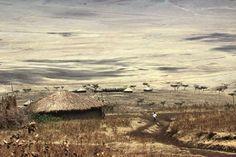 Category: Rural - Ewa Rapciak  Srengeti village Tanzania