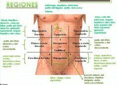 Aprende de una manera muy fácil las regiones abdominales y los órganos que aloja, asi como el abordaje del síndrome doloroso abdominal con la mnemotecnia ALICIA.