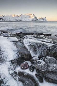 Seydoux, Arctic, Winter Wonderland, Woodland, Nature, Outdoor, Olive Tree, Photography, Outdoors