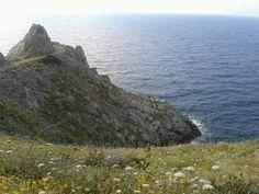 Capo Enfola