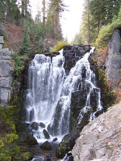 Kings Creek Falls, Lassen Park Great Hike and even can bring your horse on trail to falls. Tallest waterfall in Lassen Park. Horse boarding at www.stbernardlodge.com