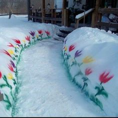 DIY Blooms in the winter, great idea for bringing flowers to your snowy garden with spray paint.