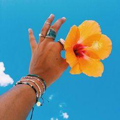 MY TUMBLR: omgivelove.tumblr.com 🌺🌵🌙🌀 #bohemian #boho #frangipani #summer #flower #outdoor #photooftheday #random