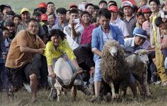People look on as participants ride goats and sheep during a race to celebrate a local festival in Fengshan town, Guizhou province, China, on July 26/14.