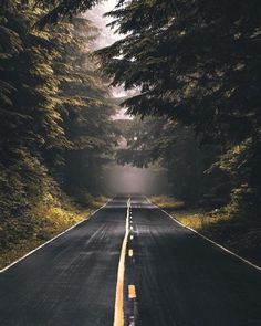 Post with 3280 votes and 141177 views. Tagged with nature, The Great Outdoors; Shared by DwightKScrute. If These Trees Could Talk Beautiful Roads, Beautiful World, Beautiful Places, Landscape Photography, Nature Photography, Forest Road, Belle Photo, Paths, Places To Go