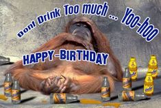 Best Funny Happy Birthday Images for for different occasions. See our huge collection of Birthday Memes and share them with your friends. Funny Happy Birthday Pictures, Funny Birthday Cards, Birthday Quotes, Funny Pictures, Humor Birthday, Funny Images, Birthday Ideas, Happy Birthday 23, Birthday Text