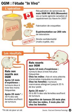 OGM: une étude relance la polémique - Libération
