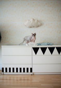 Child's bedroom with white Ikea Malm dresser decorated with geometric designs. Wood floor, wallpaper, wrinkly cat.