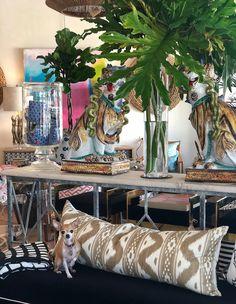 Palm Beach fronds and home decor #Mecox #interiordesign #design