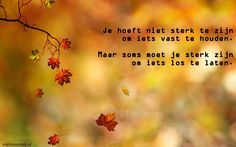 Filename: fall wallpaper photos free Resolution: File size: 1032 kB Uploaded: Oscar Edwards Date: Dutch Words, Dutch Quotes, Fall Wallpaper, Just Be You, More Than Words, Autumn Inspiration, Beautiful Words, Best Quotes, Nice Quotes