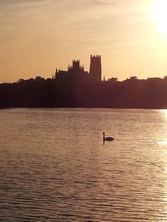 Ely Cathedral by ~vikutiki on deviantART