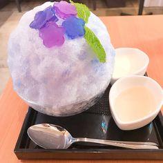 絶好のかき氷日和(土砂降り)なのでまたまた重義🍧 期間限定の紫陽花はヴィジュアル系❤️ かけるのが下手くそ過ぎる動画の通り、レモン蜜をかけると色が赤く変わりました🤗 最後のかわいい白熊くんを頼んだのは、またまたうちの40代男性、、笑 #かき氷 #重義 #寒い… Global Cooling, Bingsu, Asia, Food And Drink, Korean, Ice Cream, Sweets, Cooking, Desserts