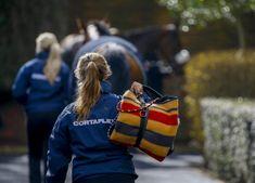 Careers in Racing launch Volunteer Career Maker programme to mark National Careers Week - The British Horseracing Authority Career, British, Product Launch, Racing, Author, School, Running, Carrera, Auto Racing