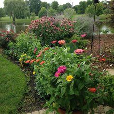 1828 Best Flower Garden Pictures Images In 2019 Flowers Vegetable