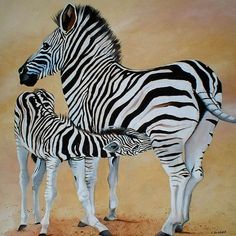 Zebra Bonding --- Art by Cherie Roe Dirksen -- Print Available (click on photo)
